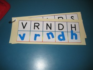 This is one example of how you can use these mats--for upper and lowercase letter matching.