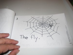 Page 3.  Students trace the word fly.